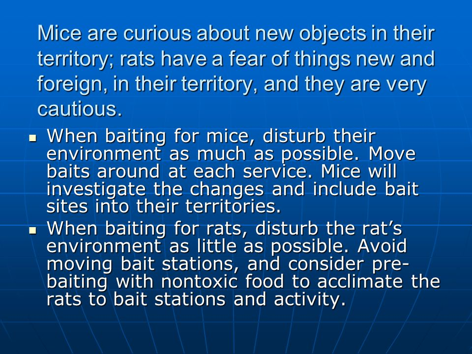 Mice are curious about new objects in their territory; rats have a fear of things new and foreign, in their territory, and they are very cautious.