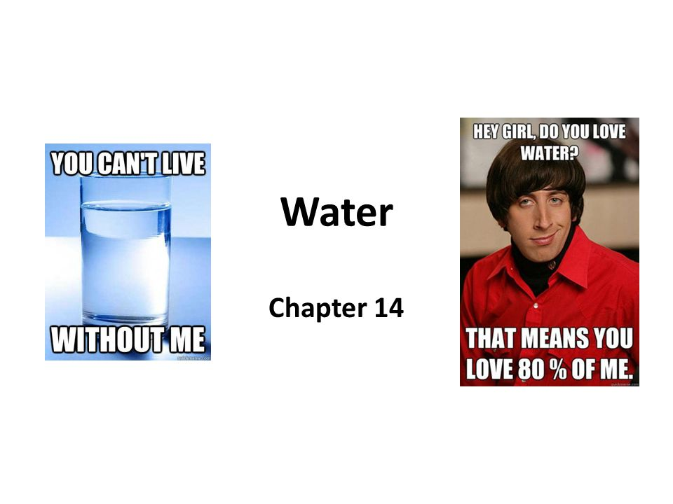 Water Chapter 14