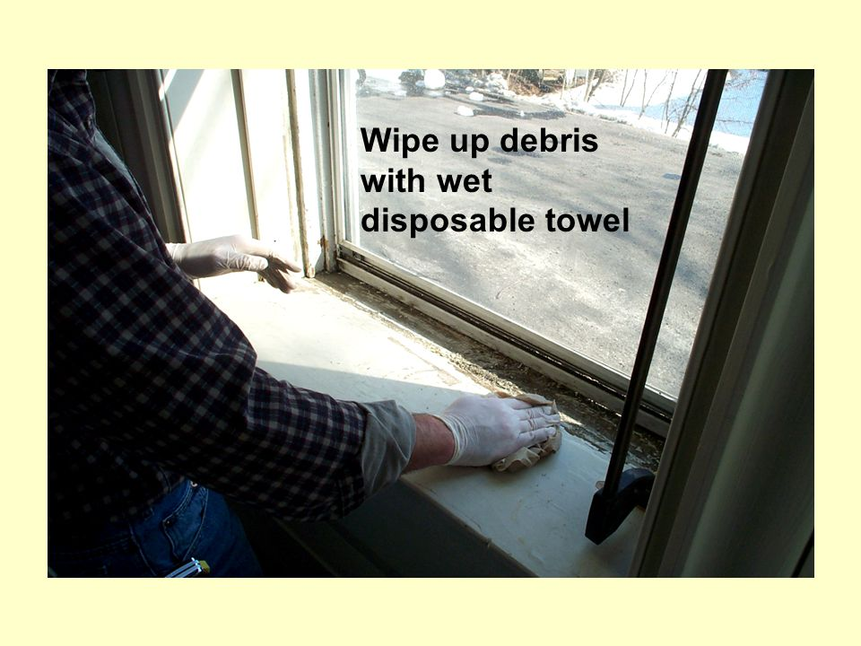 Wipe up debris with wet disposable towel