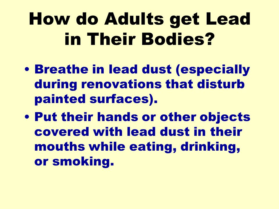 How do Adults get Lead in Their Bodies