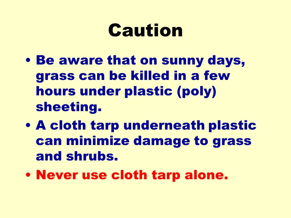 Caution Be aware that on sunny days, grass can be killed in a few hours under plastic (poly) sheeting.