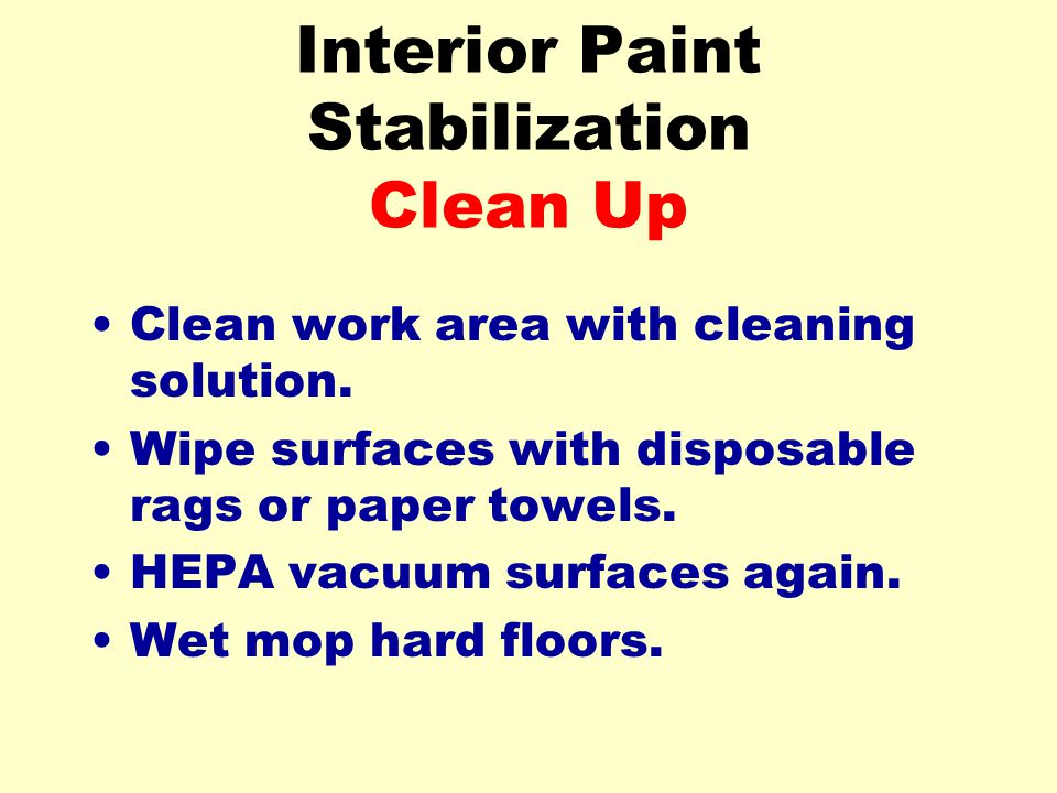 Interior Paint Stabilization Clean Up