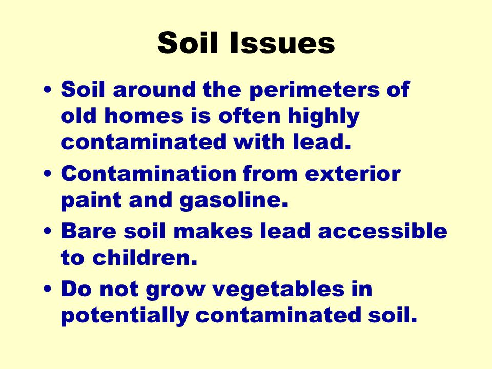 Soil Issues Soil around the perimeters of old homes is often highly contaminated with lead. Contamination from exterior paint and gasoline.