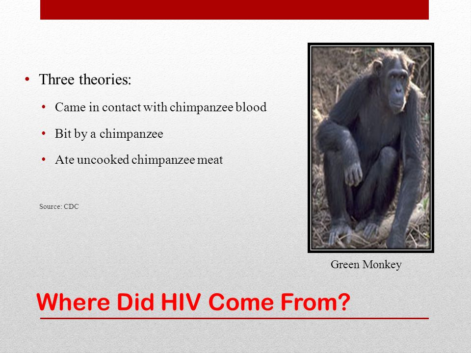 Where Did HIV Come From Three theories: