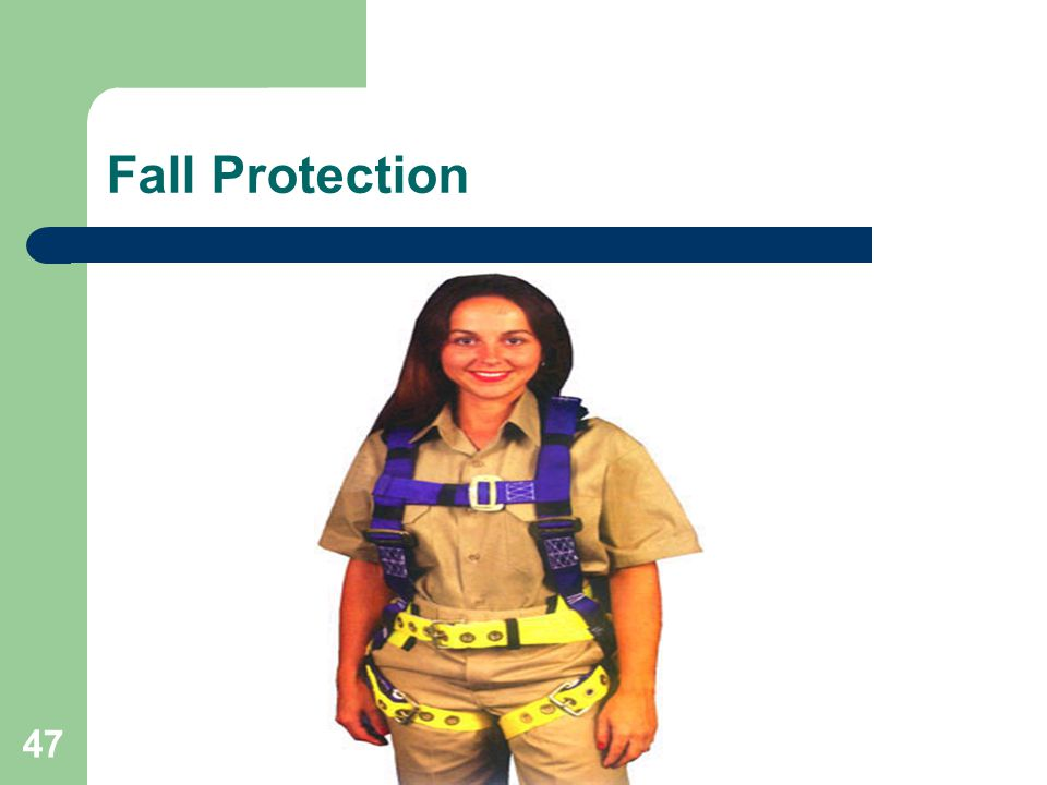 Fall Protection Many types of Body Harnesses