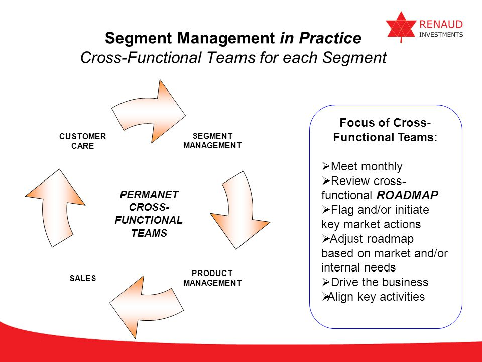 Segment Management in Practice Cross-Functional Teams for each Segment