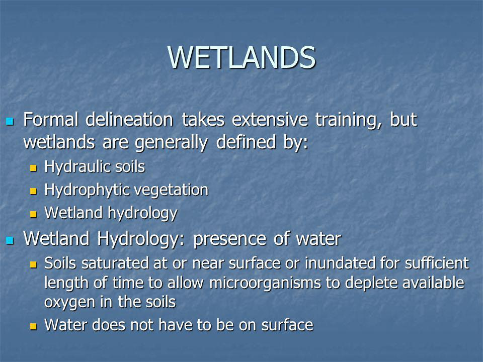 WETLANDS Formal delineation takes extensive training, but wetlands are generally defined by: Hydraulic soils.