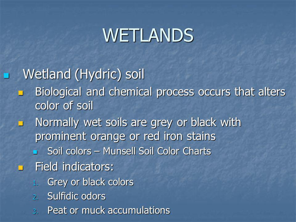 WETLANDS Wetland (Hydric) soil