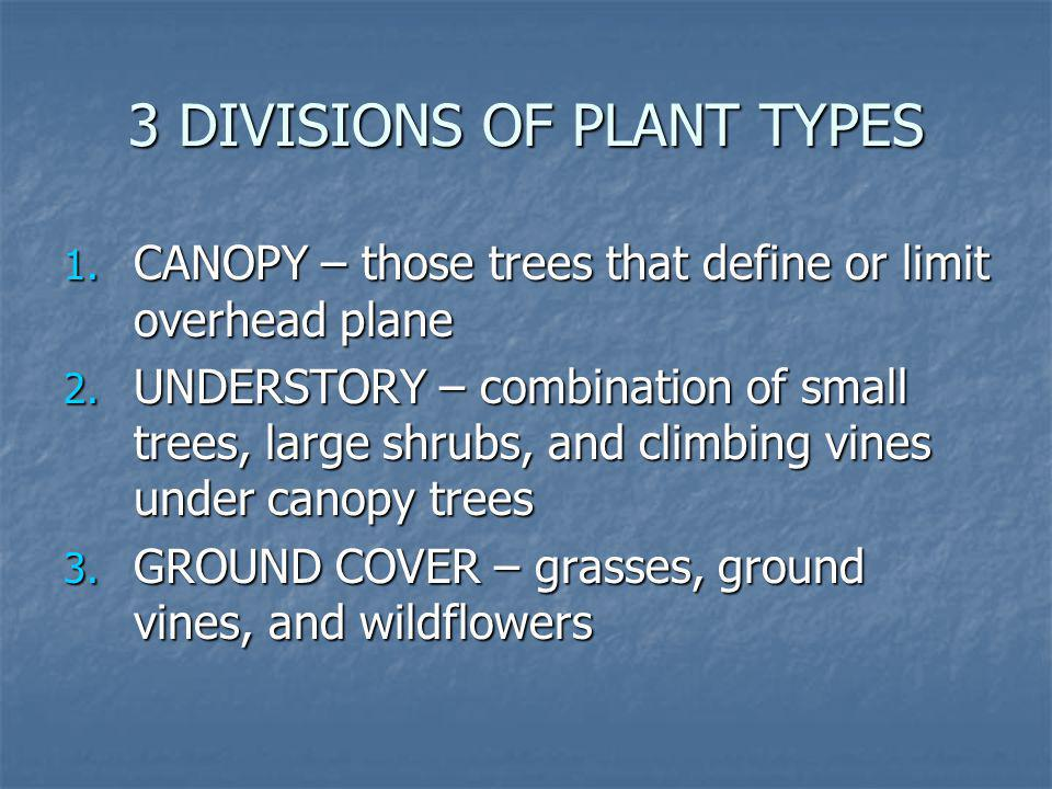 3 DIVISIONS OF PLANT TYPES