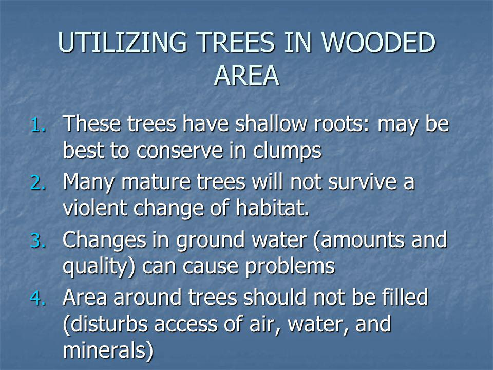 UTILIZING TREES IN WOODED AREA