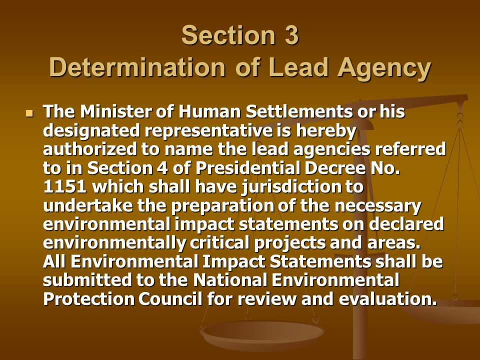 Section 3 Determination of Lead Agency