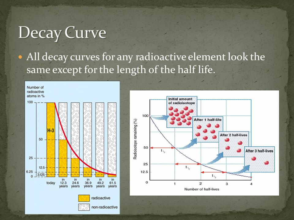 Decay Curve All decay curves for any radioactive element look the same except for the length of the half life.