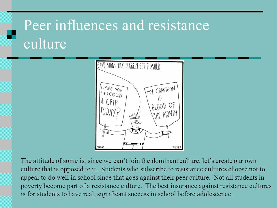 Peer influences and resistance culture