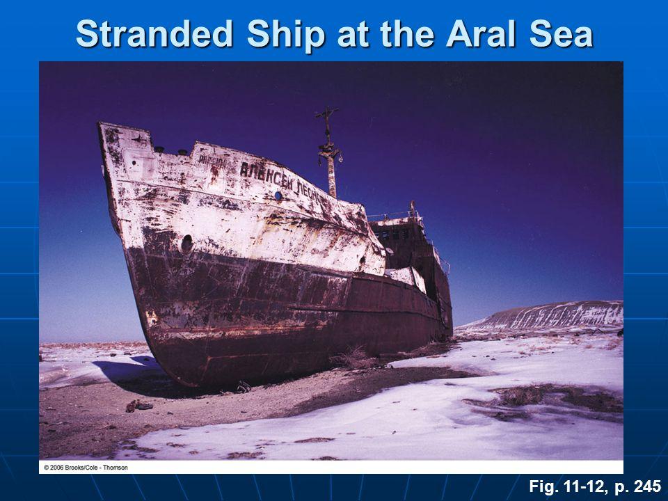 Stranded Ship at the Aral Sea