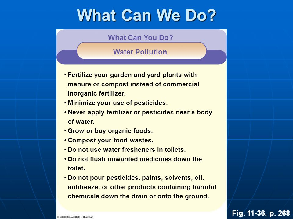 What Can We Do What Can You Do Water Pollution Fig. 11-36, p. 268