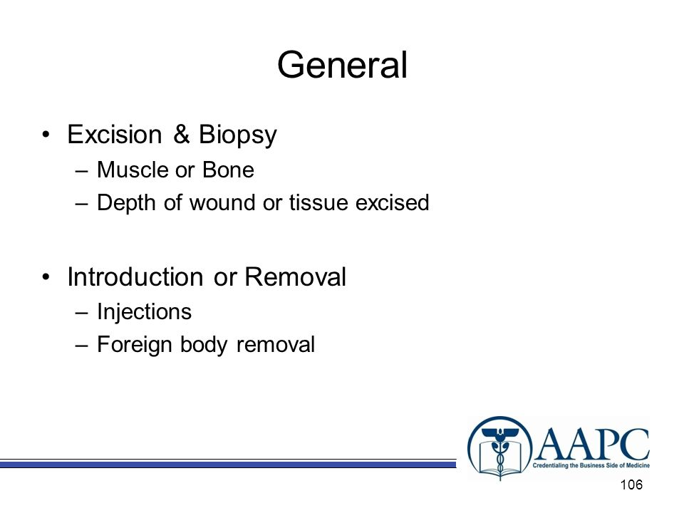 General Excision & Biopsy Introduction or Removal Muscle or Bone