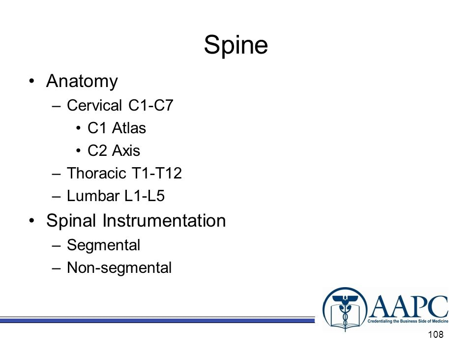 Spine Anatomy Spinal Instrumentation Cervical C1-C7 C1 Atlas C2 Axis