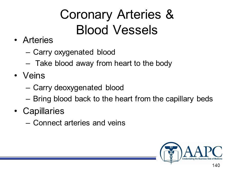 Coronary Arteries & Blood Vessels