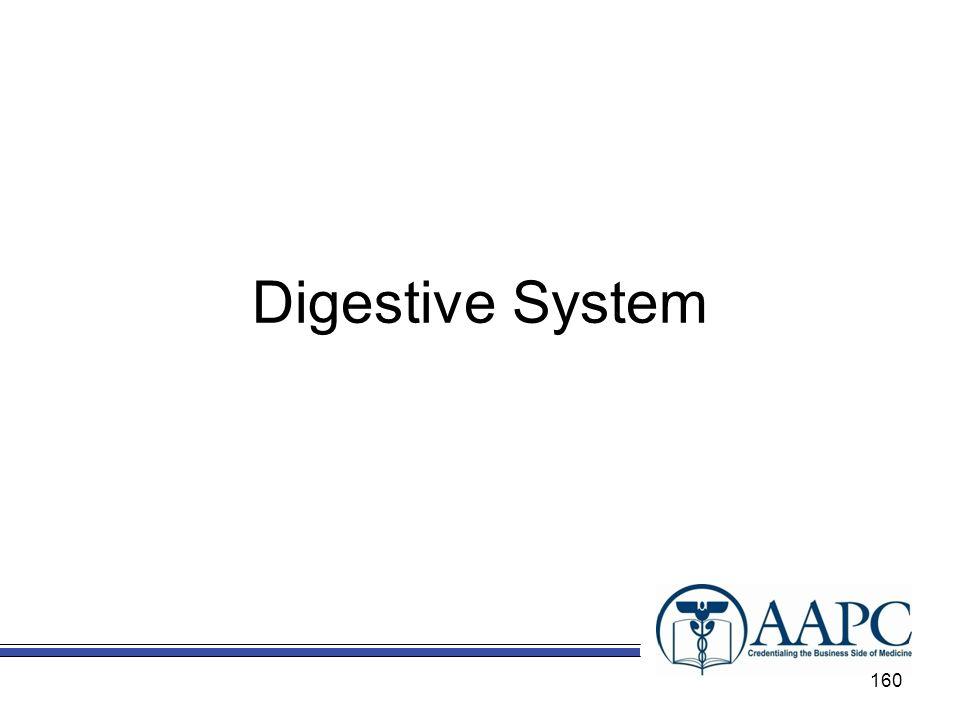 Digestive System Chapter 9 – Digestive System