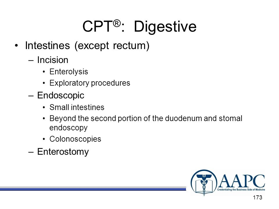 CPT®: Digestive Intestines (except rectum) Incision Endoscopic