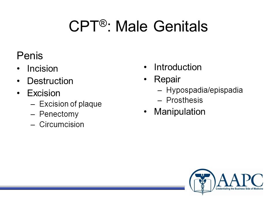 CPT®: Male Genitals Penis Incision Introduction Repair Destruction