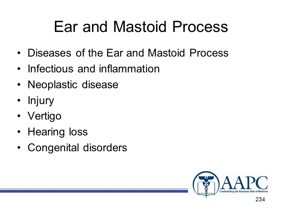 Ear and Mastoid Process