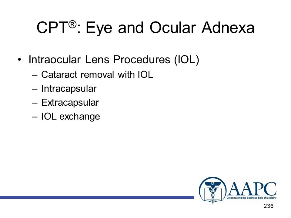 CPT®: Eye and Ocular Adnexa
