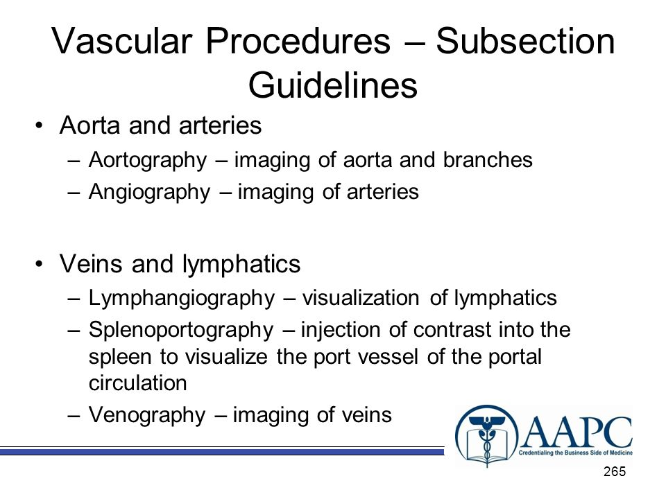 Vascular Procedures – Subsection Guidelines