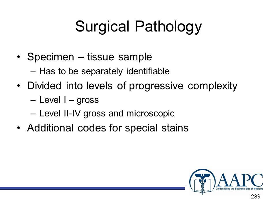 Surgical Pathology Specimen – tissue sample