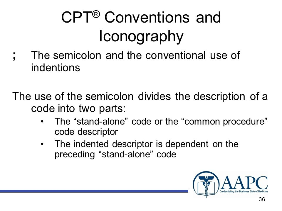 CPT® Conventions and Iconography