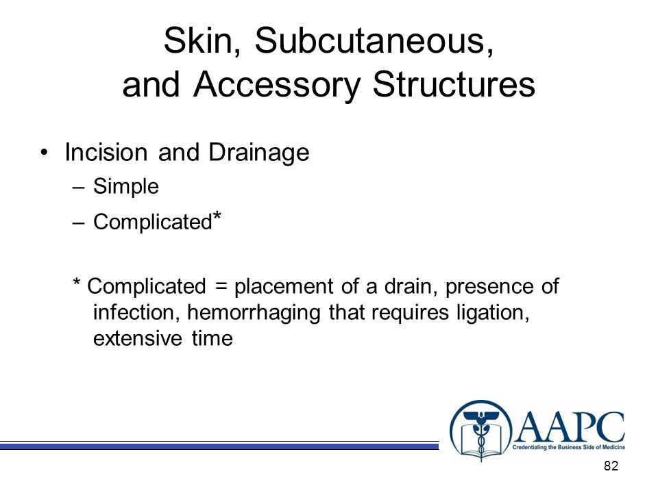 Skin, Subcutaneous, and Accessory Structures