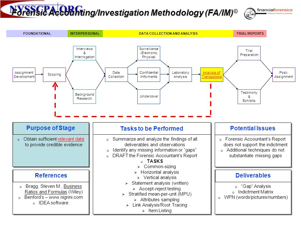 Forensic Accounting/Investigation Methodology (FA/IM)©