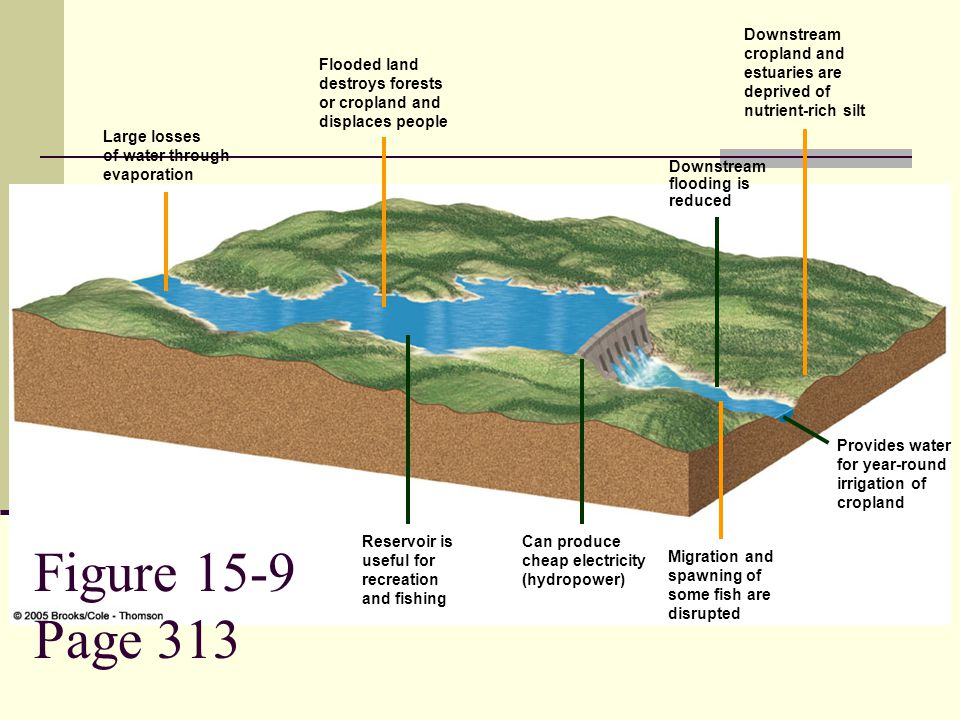 Figure 15-9 Page 313 Downstream cropland and estuaries are deprived of