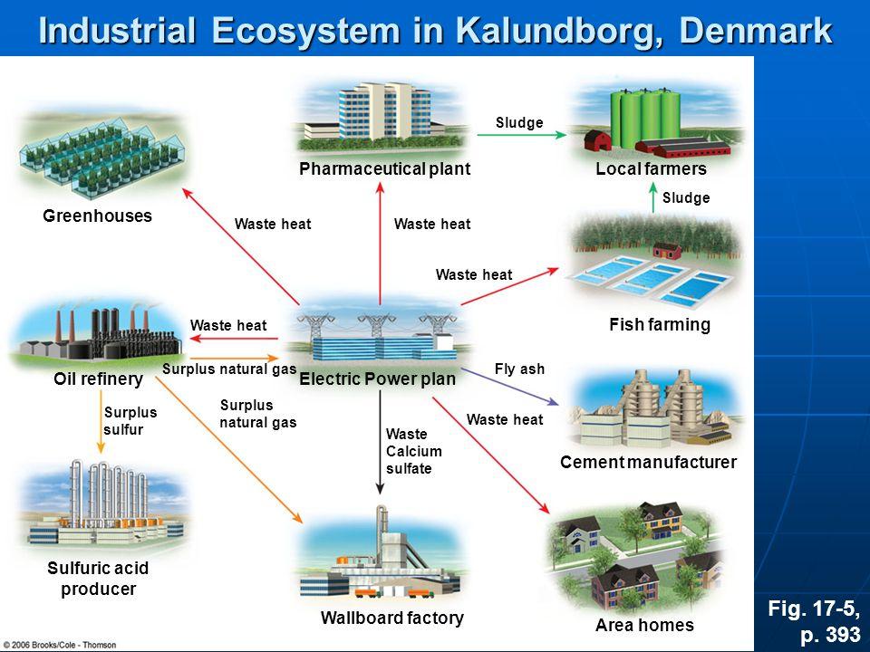 Industrial Ecosystem in Kalundborg, Denmark