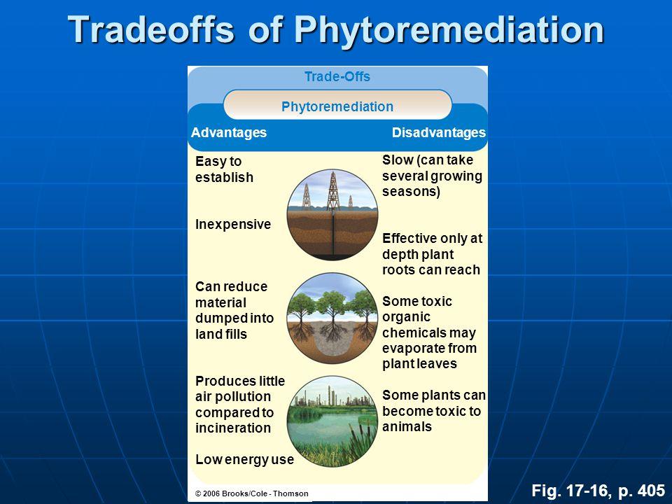 Tradeoffs of Phytoremediation