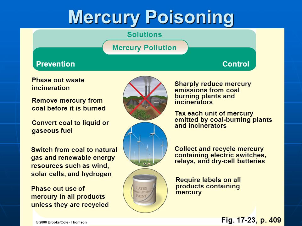 Mercury Poisoning Solutions Mercury Pollution Prevention Control
