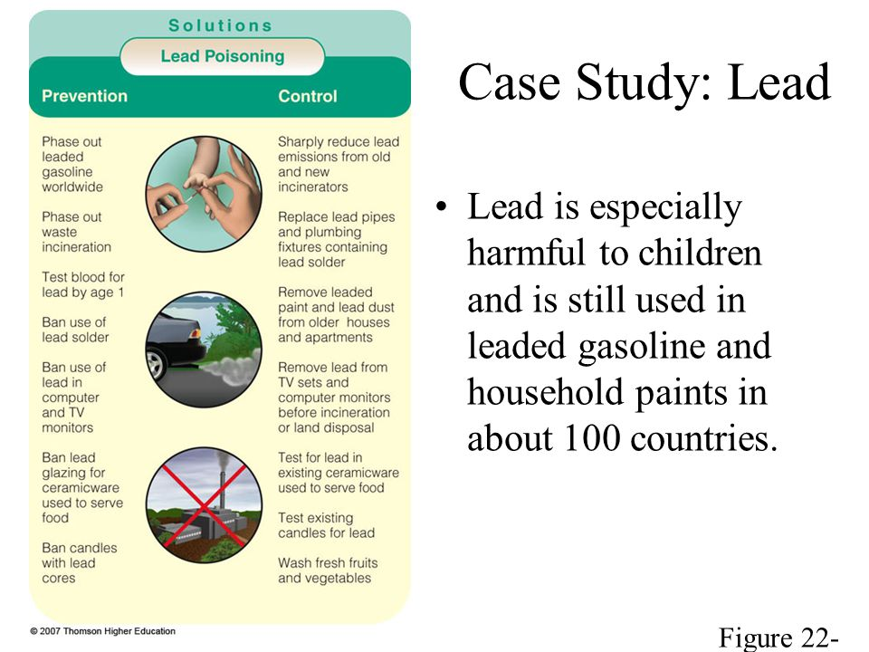 Case Study: Lead Lead is especially harmful to children and is still used in leaded gasoline and household paints in about 100 countries.