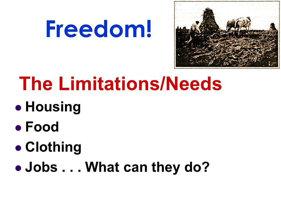 Freedom! The Limitations/Needs Housing Food Clothing