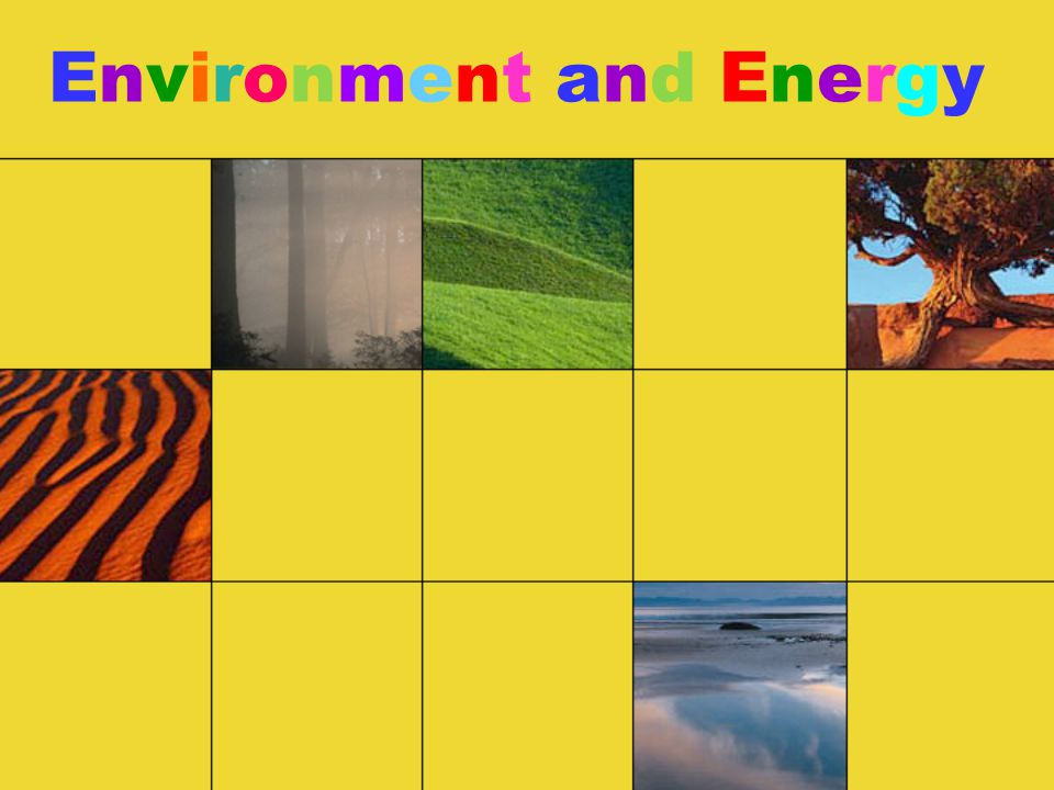 Environment and Energy