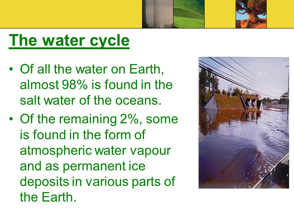 The water cycle Of all the water on Earth, almost 98% is found in the salt water of the oceans.
