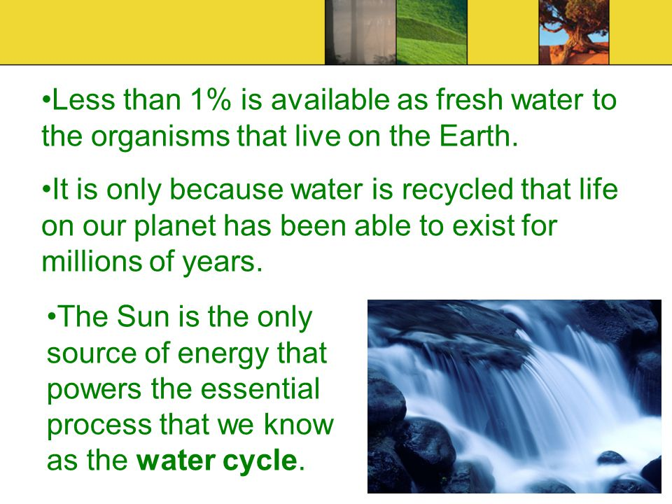 Less than 1% is available as fresh water to the organisms that live on the Earth.