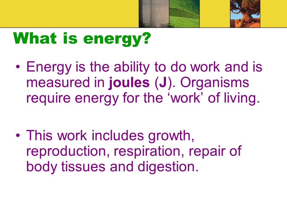What is energy Energy is the ability to do work and is measured in joules (J). Organisms require energy for the 'work' of living.