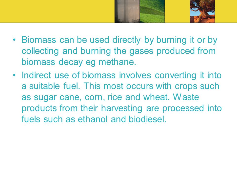 Biomass can be used directly by burning it or by collecting and burning the gases produced from biomass decay eg methane.