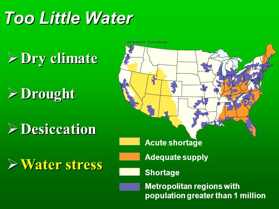 Too Little Water Dry climate Drought Desiccation Water stress