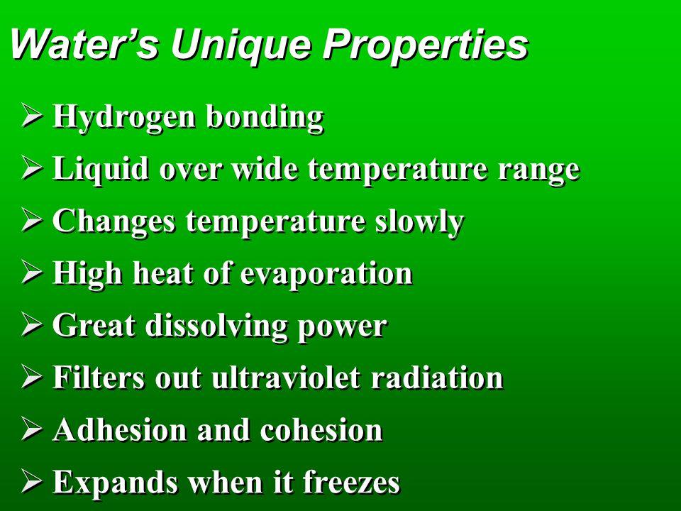 Water's Unique Properties