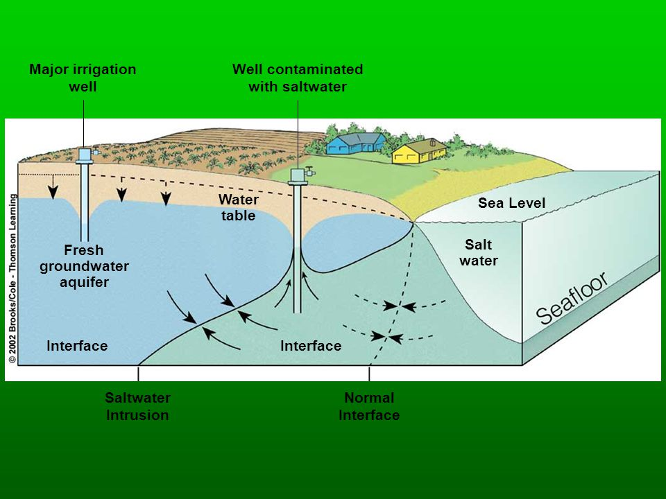 Major irrigation well. Well contaminated. with saltwater. Water table. Sea Level. Salt. water.