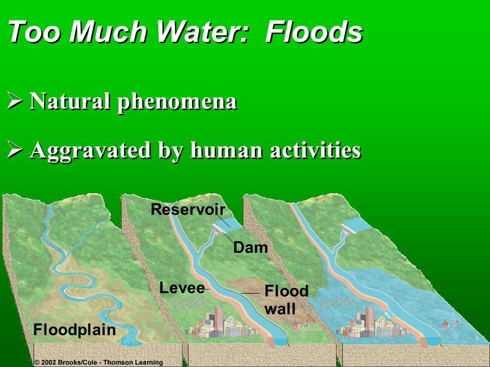 Too Much Water: Floods Natural phenomena
