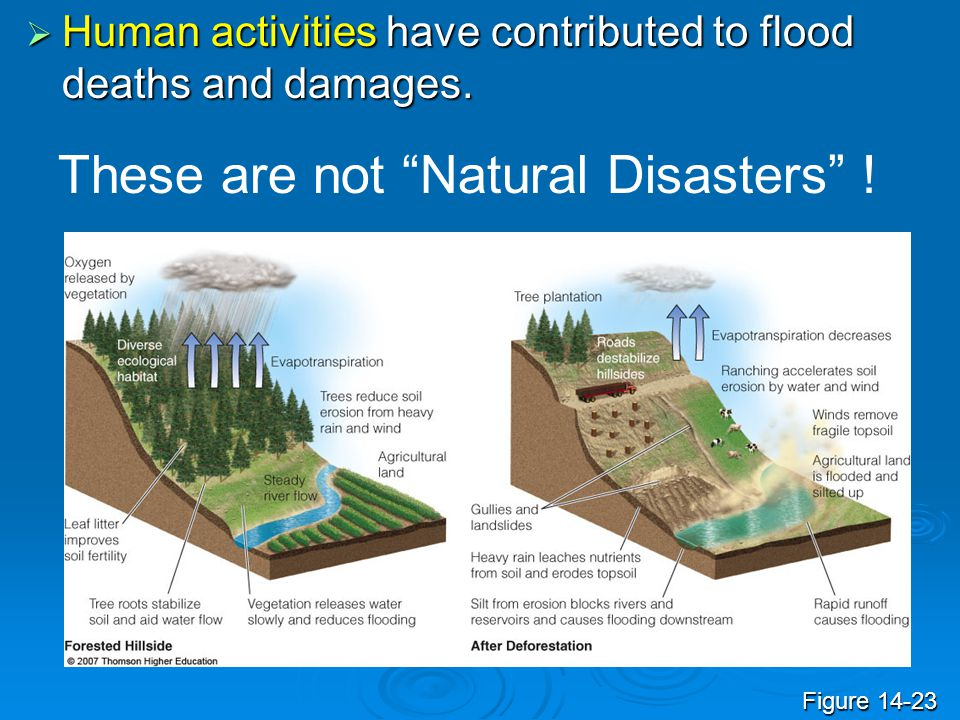These are not Natural Disasters !
