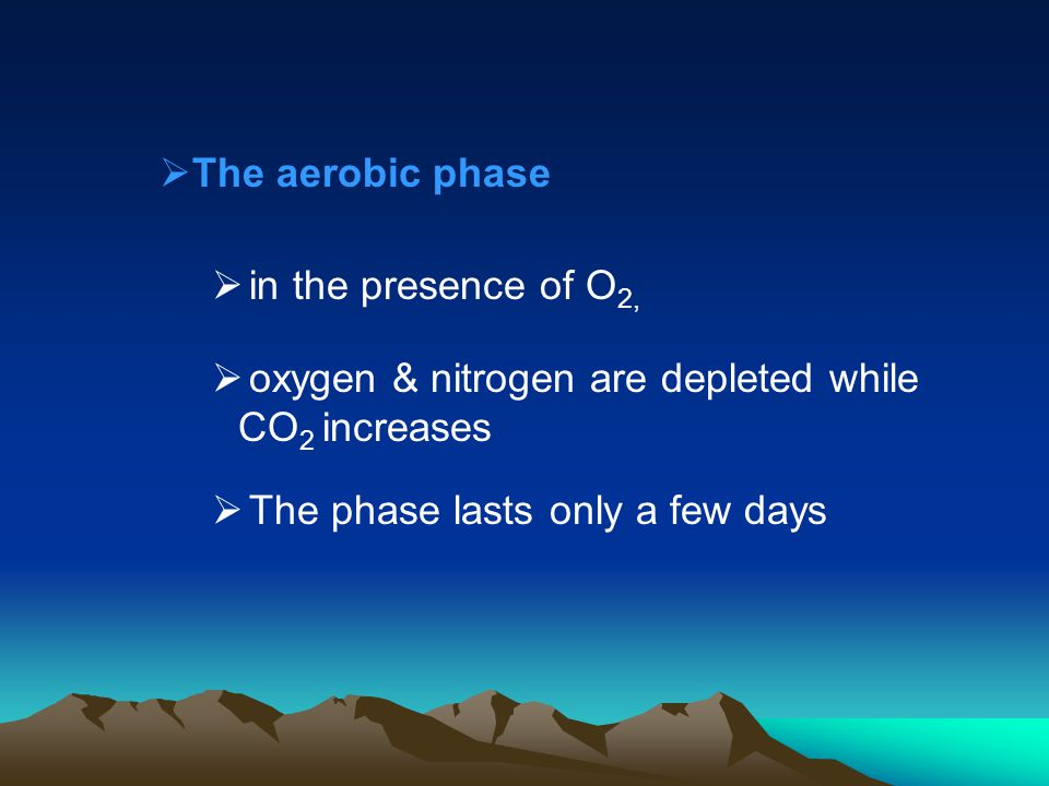 The aerobic phase in the presence of O2, oxygen & nitrogen are depleted while CO2 increases.