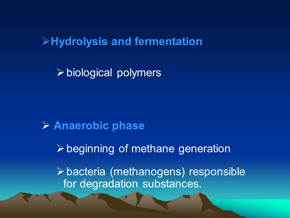 Hydrolysis and fermentation